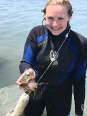 I found a Welk (similar to a conch, essentially a very large snail) while harvesting seagrass!