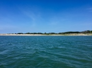 One of the many uninhabited barrier islands in the Chesapeake Bay.